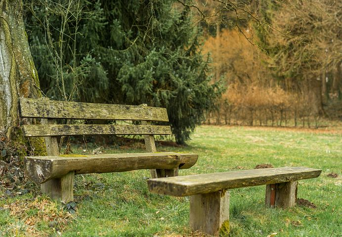 APRIL MEETING: Conserving Land through Natural Burial: Making it Happen in the TwinCities